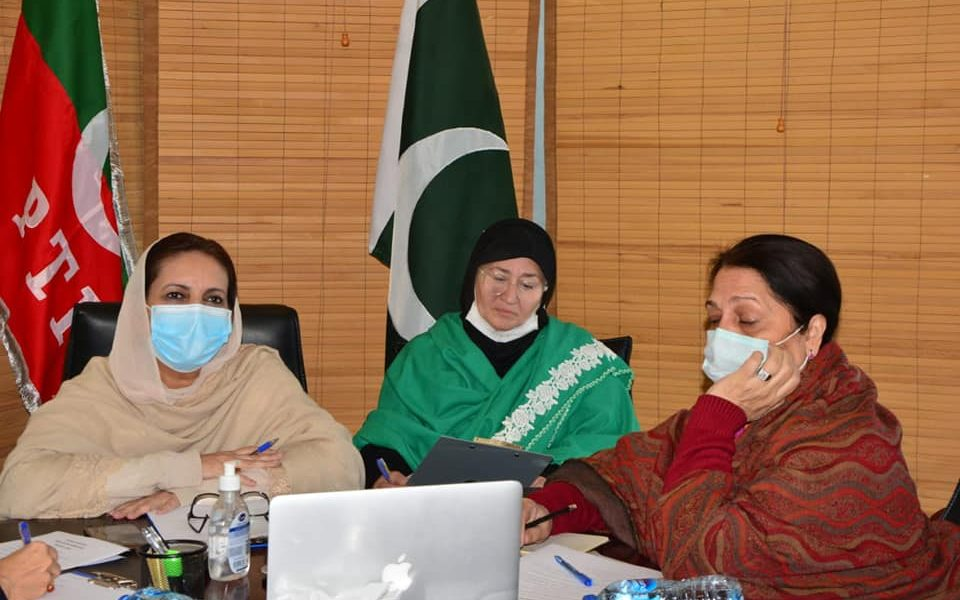 Chaired meeting of the Central Cabinet Women Wing